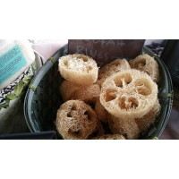 Raw Loofah Rings