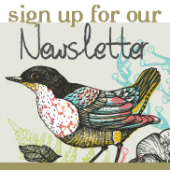 Sign up for Salve Newsletter